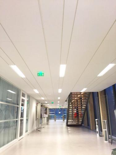 Faux plafond design en minéral - DDTM de Vannes